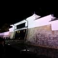 写真: 夜の二条城
