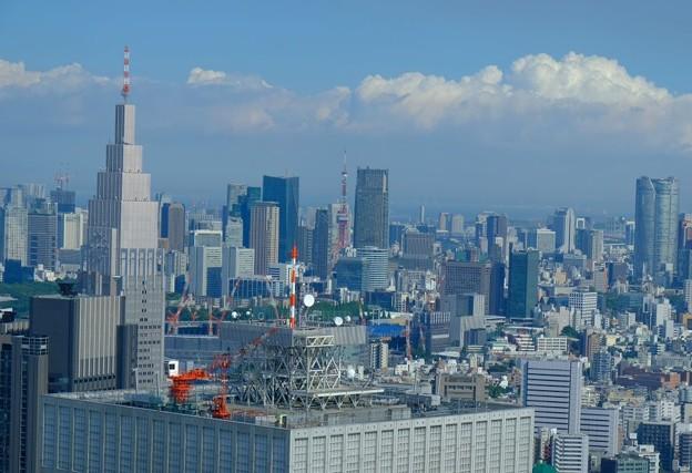 高かった東京タワーはビルの中