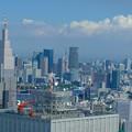 写真: 高かった東京タワーはビルの中