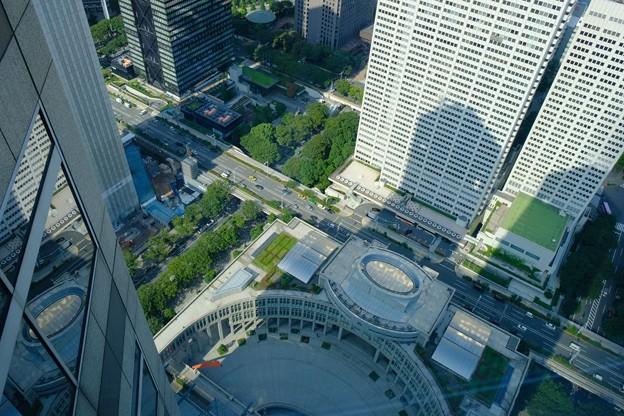 都庁の真下を見下ろす