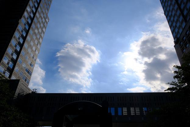 雲が主役?