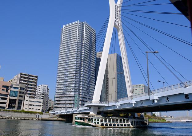 隅田川の橋5 中央大橋と船「道灌」