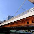 Photos: 隅田川の橋 9新大橋