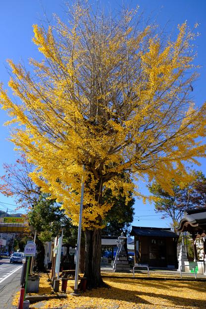 三嶋神社1
