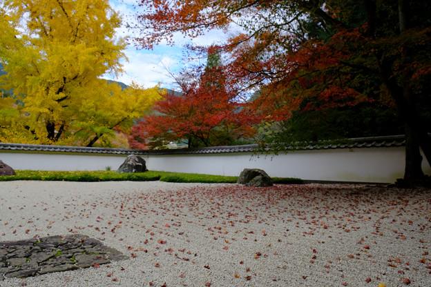 玉堂美術館の枯山水石庭2