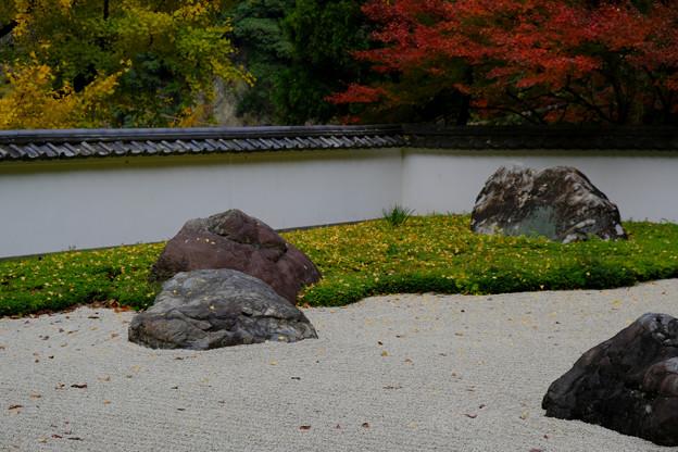 玉堂美術館の枯山水石庭4