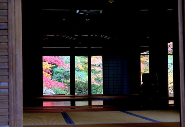 5南禅院でプチ床紅葉