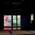 写真: 5南禅院でプチ床紅葉