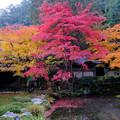 Photos: 6庭園池まわり