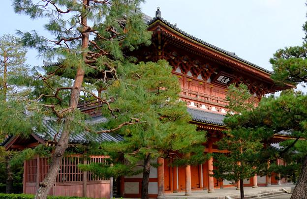 13大徳寺山門