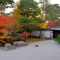 開山堂の庭1