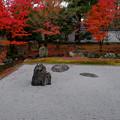 開山堂の庭2