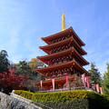 Photos: 堂々と五重塔
