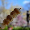 Photos: しょうゆ味