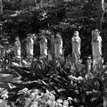 Photos: 六地蔵モノクロ