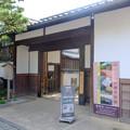 Photos: 圓徳院