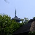 Photos: 八坂の塔