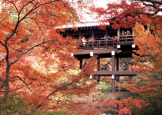 東福寺通天橋は大混雑
