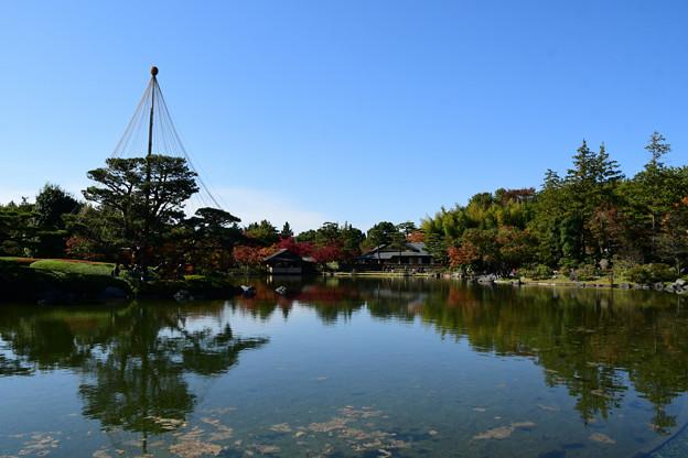 池周りの紅葉