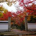 Photos: 浄住寺山門付近