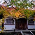Photos: 地蔵堂