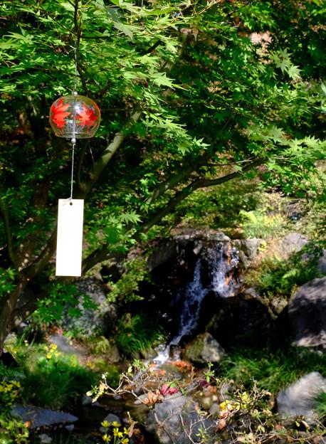 滝と紅葉風鈴