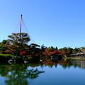 Photos: 池写り