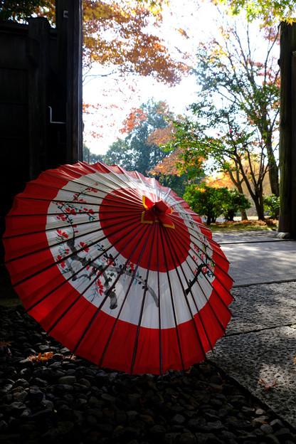 和傘の演出