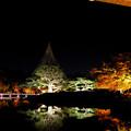 日本庭園5
