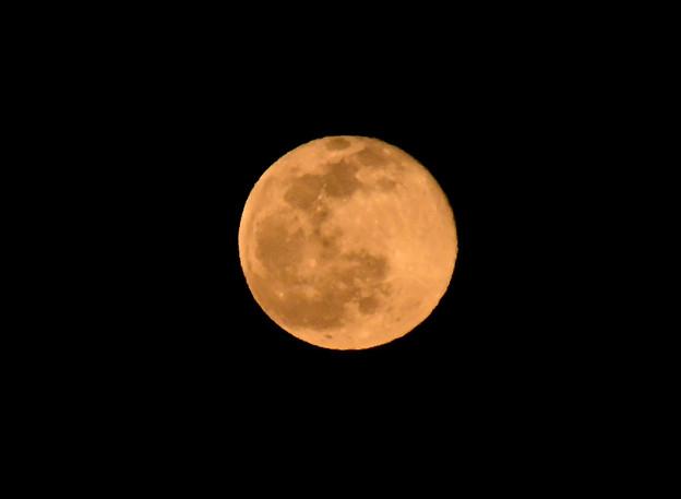 29日の満月