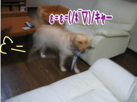 Photos: 紫音8