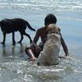 Photos: 少年と犬