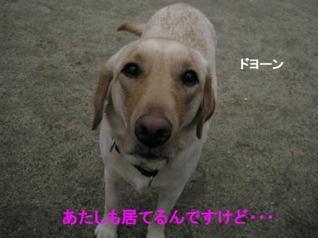なんか暗いけど・・・(^▽^;)