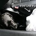 Photos: ええ匂い♪