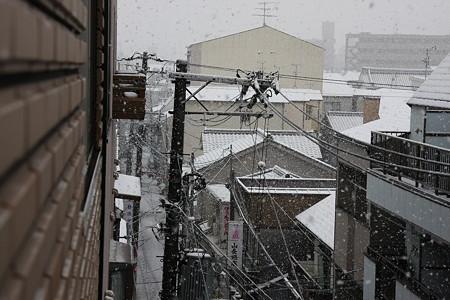 市内にもやっと雪が!!