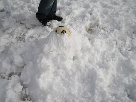 埋もれたボール