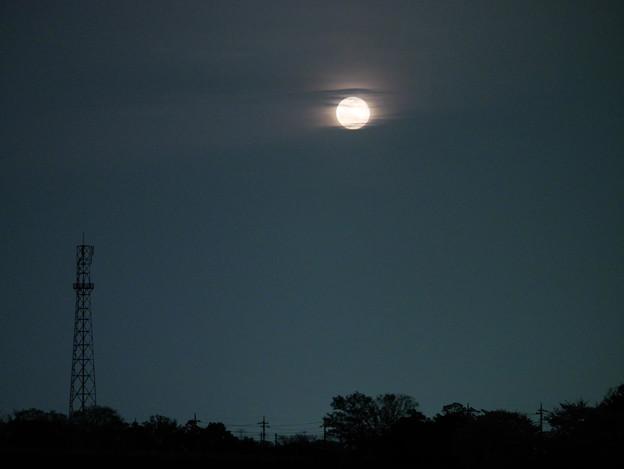 朧月(おぼろづき)昇る
