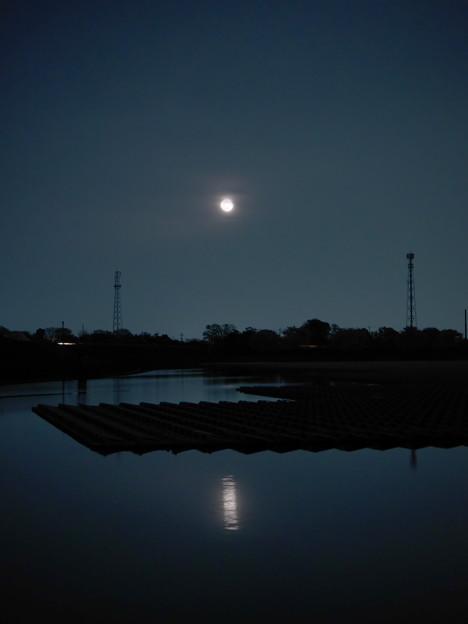 メガソーラーに朧月昇る