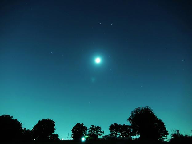 公園の月夜