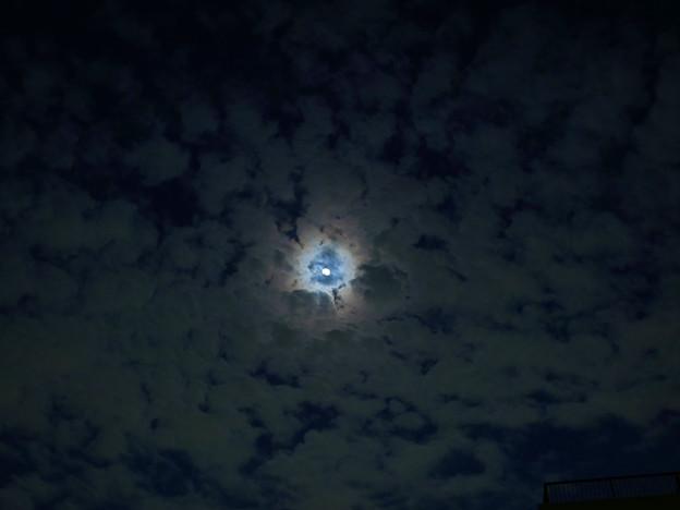 写真: うろこ雲の狭間の月(虹色?!)
