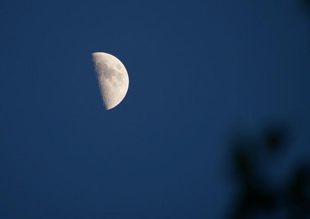 日没時の上弦の月