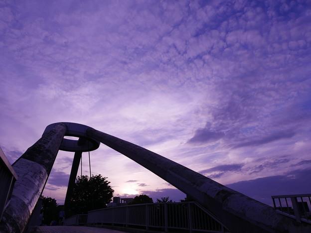 写真: 歩行者自転車専用橋