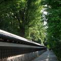 写真: 小石川後楽園の塀