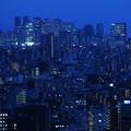 写真: 混沌都市夜景