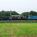 写真: 秩父鉄道石灰石輸送列車