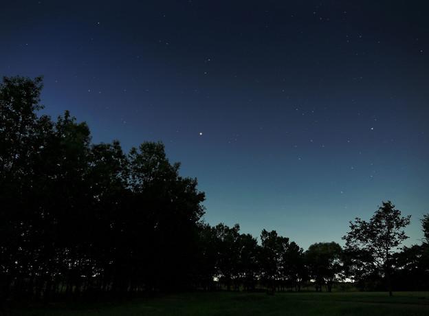 夜の公園~火星大接近