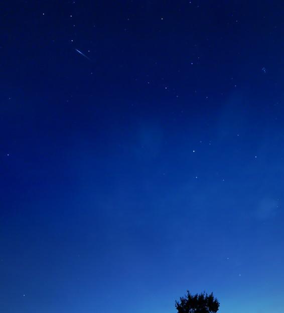 写真: ペルセウス座流星群