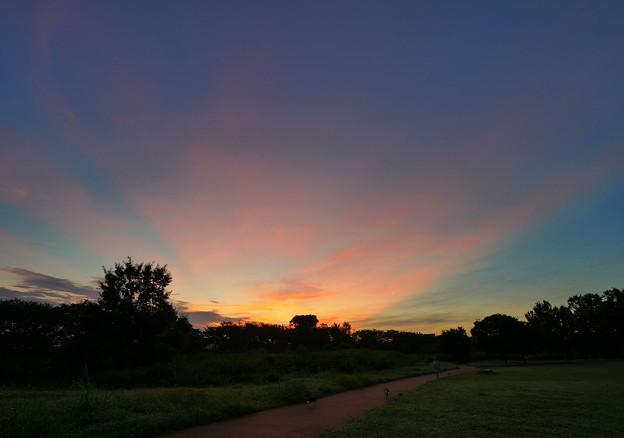 写真: 朝焼けの薄明光線