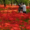 Photos: 「きれい~☆」