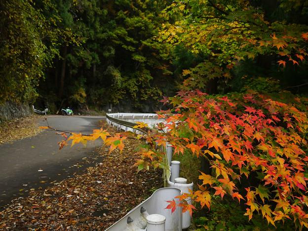 旧道沿いのワンポイント 571be-m